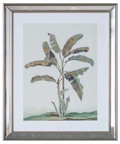"""""""Banana Palm"""" Framed Wall Art Print, Type I, 50cm"""